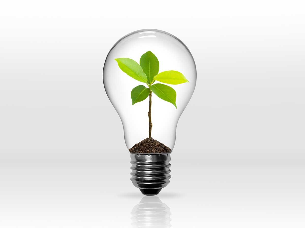 montage-ampoule-verte